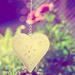 Gotta ♥ All This Sunshine by gailmmeek