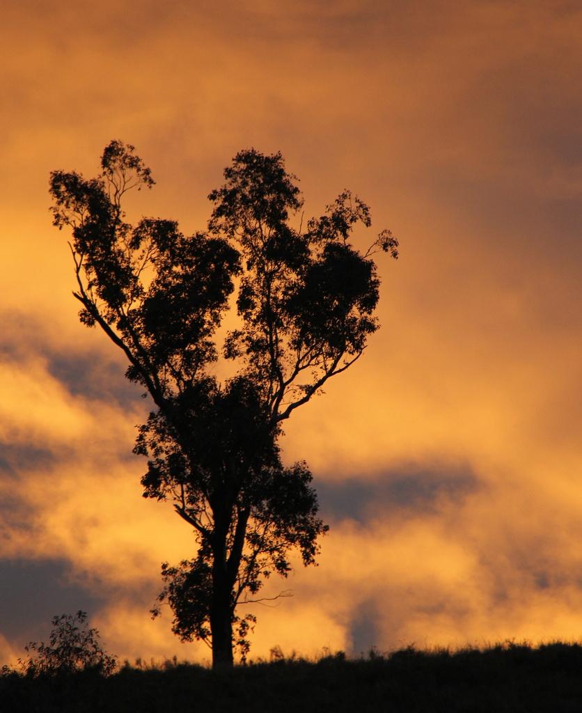 Stormy Sunset by landownunder