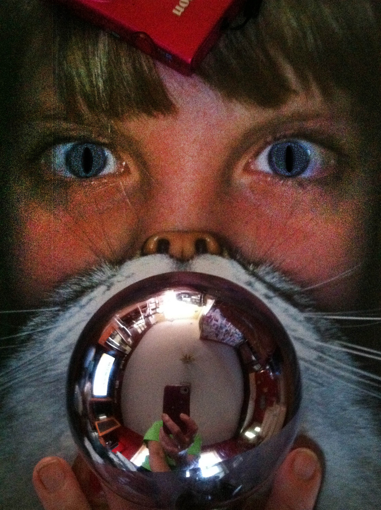 Cat with a Crystal Ball by photohoot