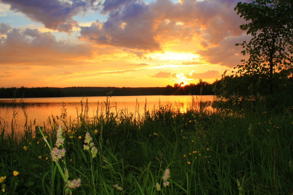 Friday Night At Harlow Pond by mandyj92