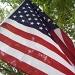 USA Flag by julie