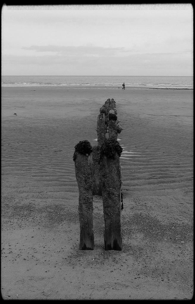 Sandsend Groynes by craftymeg