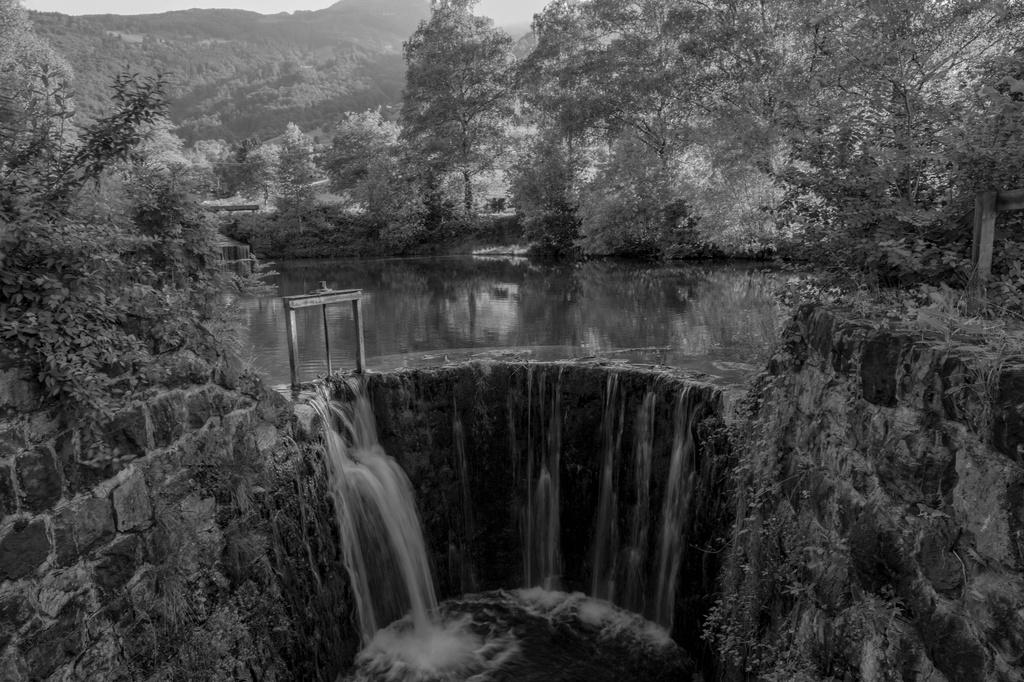 Pond in Grabs by rachel70