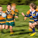 Grass Roots Rugger by helenw2