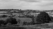 3rd Jul 2013 - Day 184 - Hidden Landscape