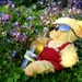 So THAT's the way the Teddy-bears have their picnic by filsie65