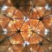 Kaleidoscope pattern by fishers