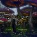 Visiting Wonderland by gavincci