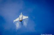 21st Jul 2013 - Day 202 - Gripen