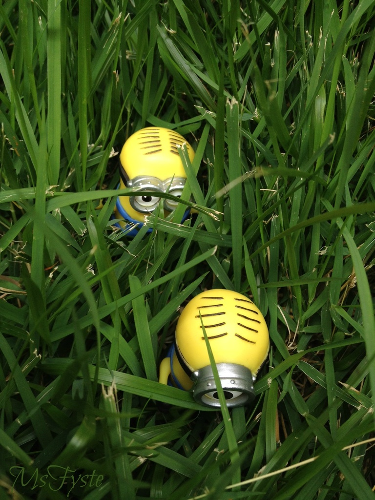 Minions at Work - Field Trip by msfyste
