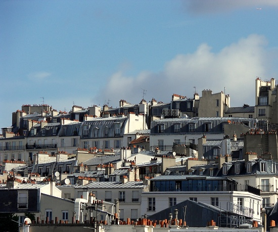 Roofs of Paris by berend