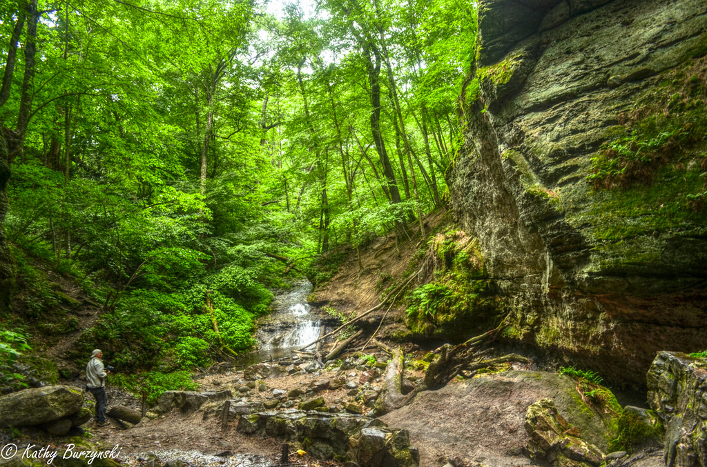 Parfrey's Glen (please view large - totally different feel) by myhrhelper