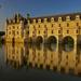Chateau de Chenonceau by ivan