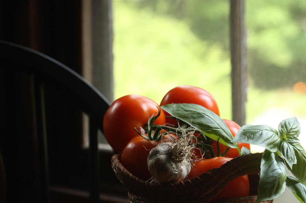 An Italian Harvest by mzzhope