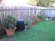 4th Aug 2013 - My Next Project:  The Backyard