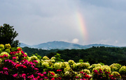 10th Aug 2013 - Rainbow on The Great Smoky Mountains