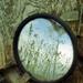 mirror by ingrid2101