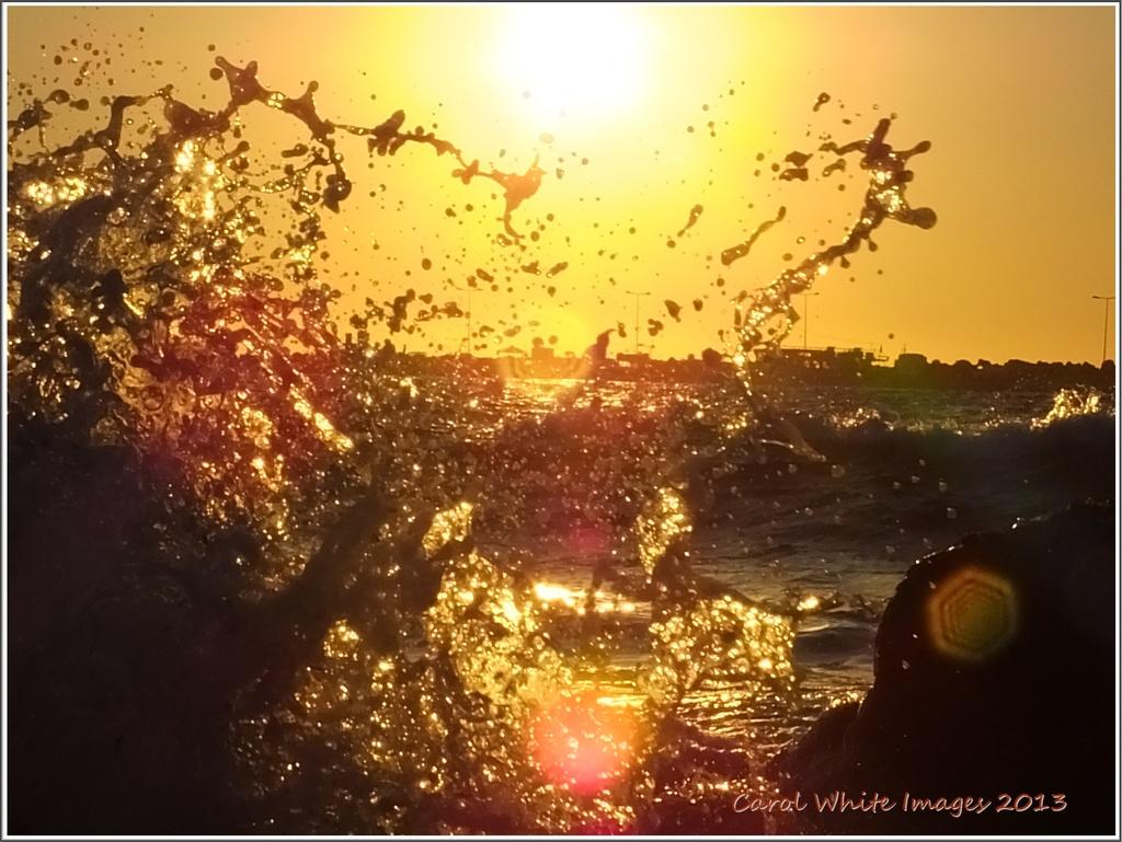 Golden Spray by carolmw