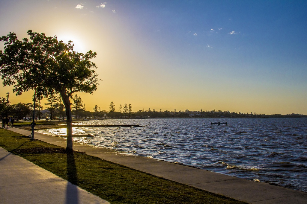Afternoon light by corymbia
