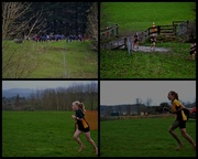 21st Aug 2013 - Cross Country..