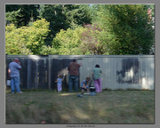 21st Aug 2013 - A Tom Sawyer Moment