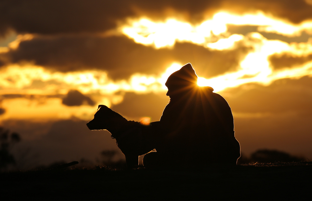 Mans best friend by abhijit