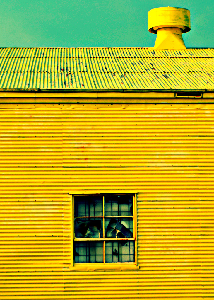 Yellow by tabbycat