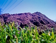 1st Sep 2010 - Making a Mountain Out of a Molehill