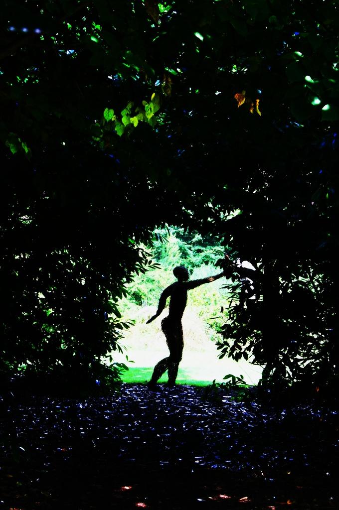 Forest Nymph by jesperani