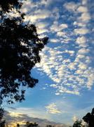 6th Sep 2013 - Morning Sky