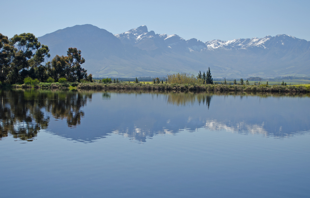 Spring in Tulbagh by salza