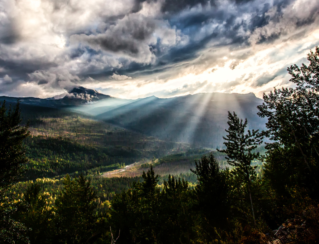 Let There Be Light by grizzlysghost