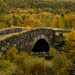 Old bridge on Dovre by elisasaeter