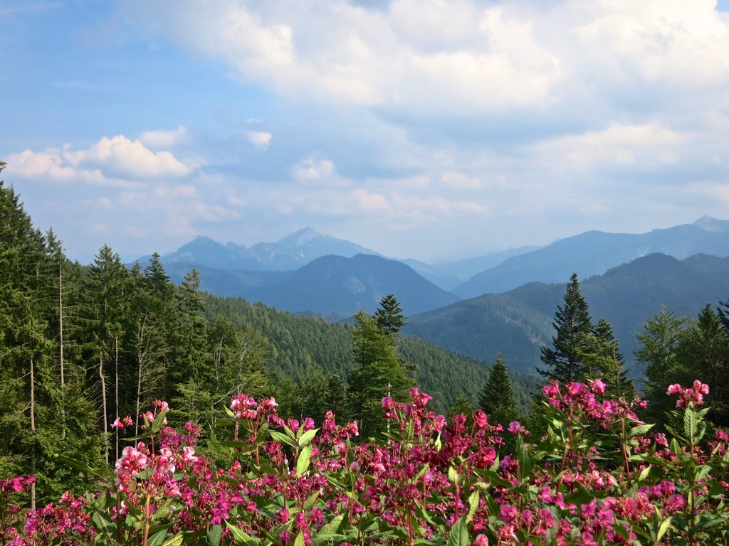 Solo Hike from Schliersee to Tegernsee by jyokota