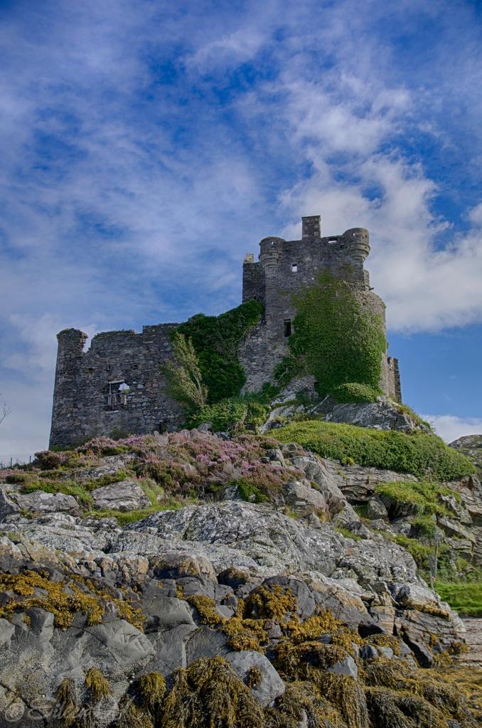 Castle Tioram by eileenw