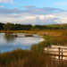 Welsh Dam by shepherdmanswife