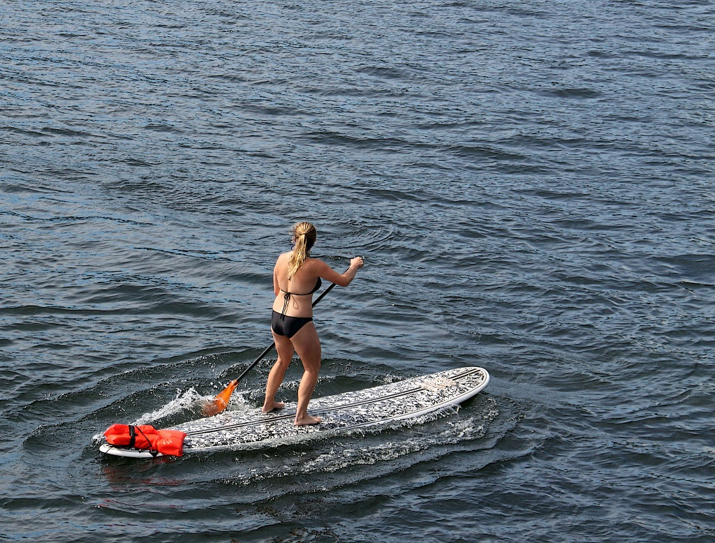 Standup Paddleboarding Close Up. by seattle