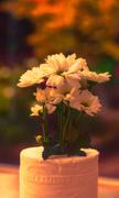 14th Sep 2013 - Mundane Toilet Paper Vase