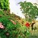 Ambling past flowers by peterdegraaff