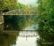 23rd Sep 2013 - River Derwent