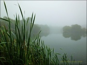 24th Sep 2013 - A Foggy Morning On The Lake