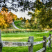 Fall Frame-up by myhrhelper