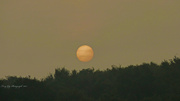 30th Sep 2013 - Morning Sun