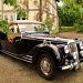 1950 Riley Roadster by snowy