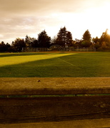 1st Oct 2013 - Empty ballfield and Empty benches