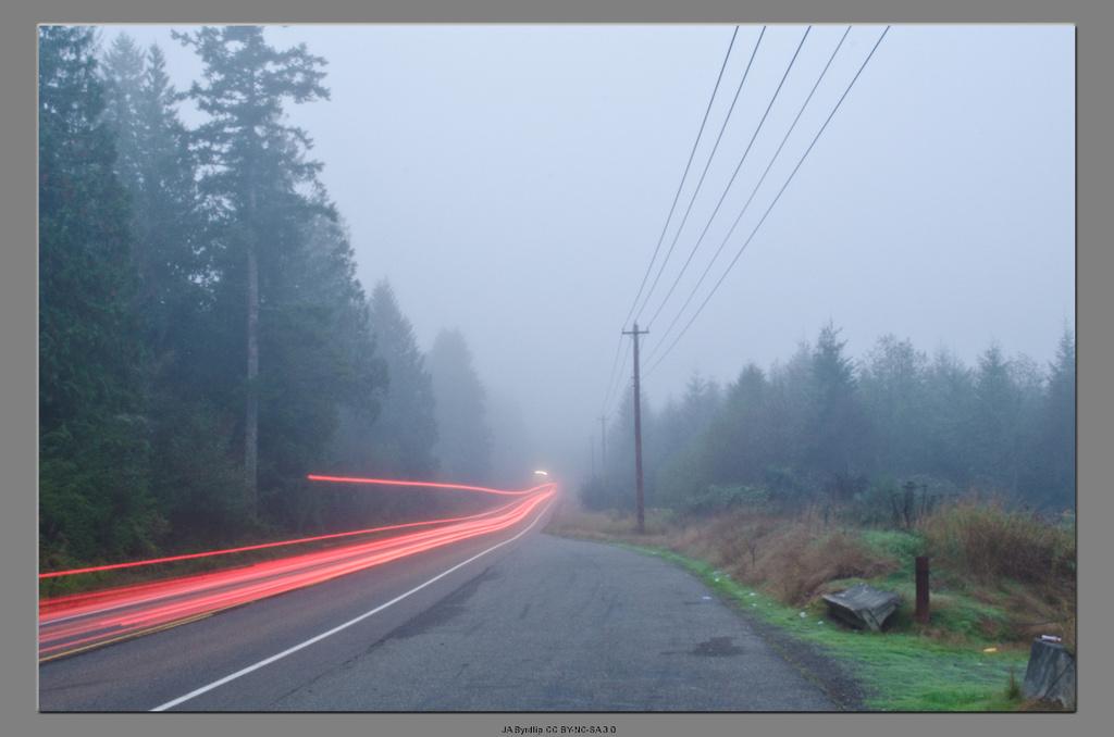Into The Fog by byrdlip