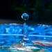 water drop by winshez