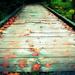 A Bridge to Somewhere by jankoos