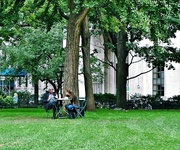 15th Oct 2013 - VIP lunch in Madison Square Park