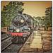 Steam Engine 80151 by ivan